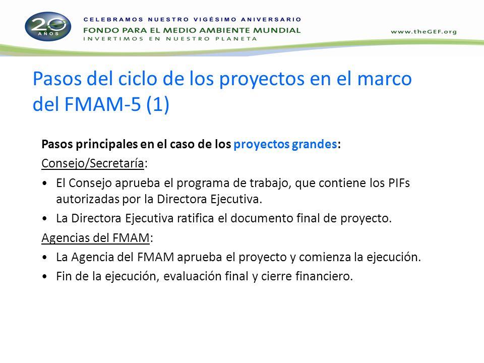 Pasos del ciclo de los proyectos en el marco del FMAM-5 (1) Pasos principales en el caso de los proyectos grandes: Consejo/Secretaría: El Consejo aprueba el programa de trabajo, que contiene los PIFs autorizadas por la Directora Ejecutiva.