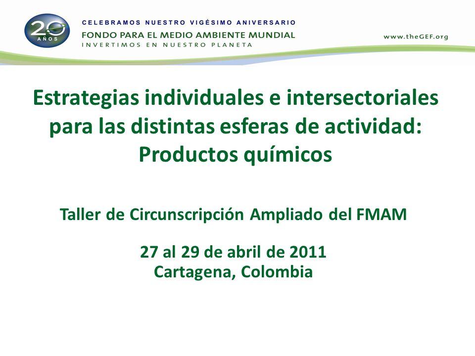 Estrategias individuales e intersectoriales para las distintas esferas de actividad: Productos químicos Taller de Circunscripción Ampliado del FMAM 27