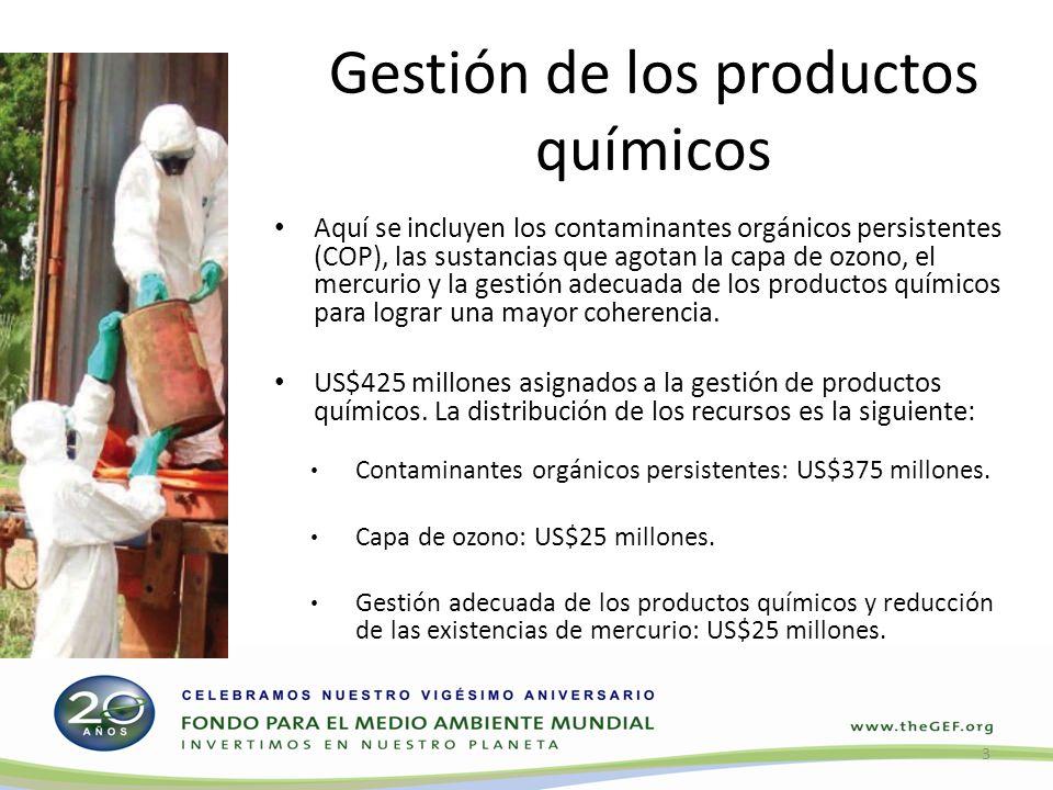 Aquí se incluyen los contaminantes orgánicos persistentes (COP), las sustancias que agotan la capa de ozono, el mercurio y la gestión adecuada de los