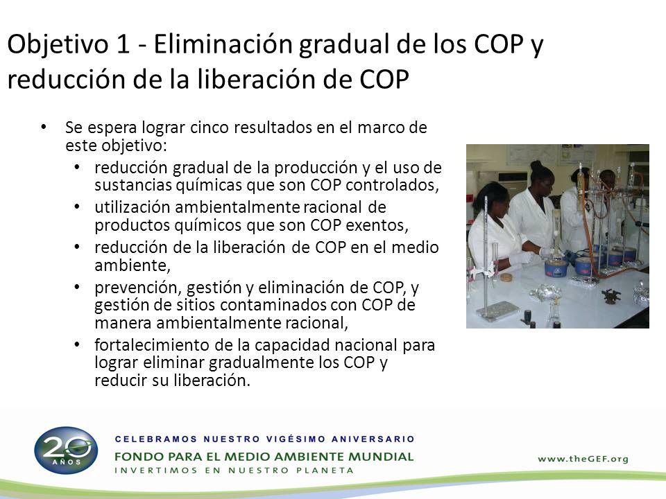 Objetivo 1 - Eliminación gradual de los COP y reducción de la liberación de COP Se espera lograr cinco resultados en el marco de este objetivo: reducc