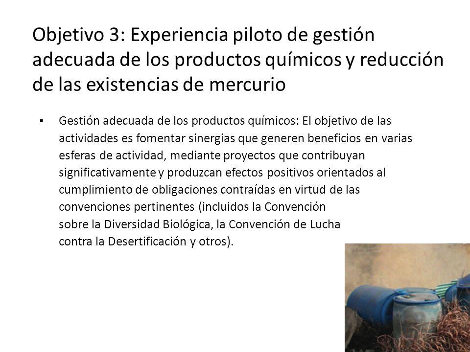 Gestión adecuada de los productos químicos: El objetivo de las actividades es fomentar sinergias que generen beneficios en varias esferas de actividad