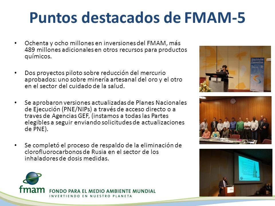 Puntos destacados de FMAM-5 Ochenta y ocho millones en inversiones del FMAM, más 489 millones adicionales en otros recursos para productos químicos.