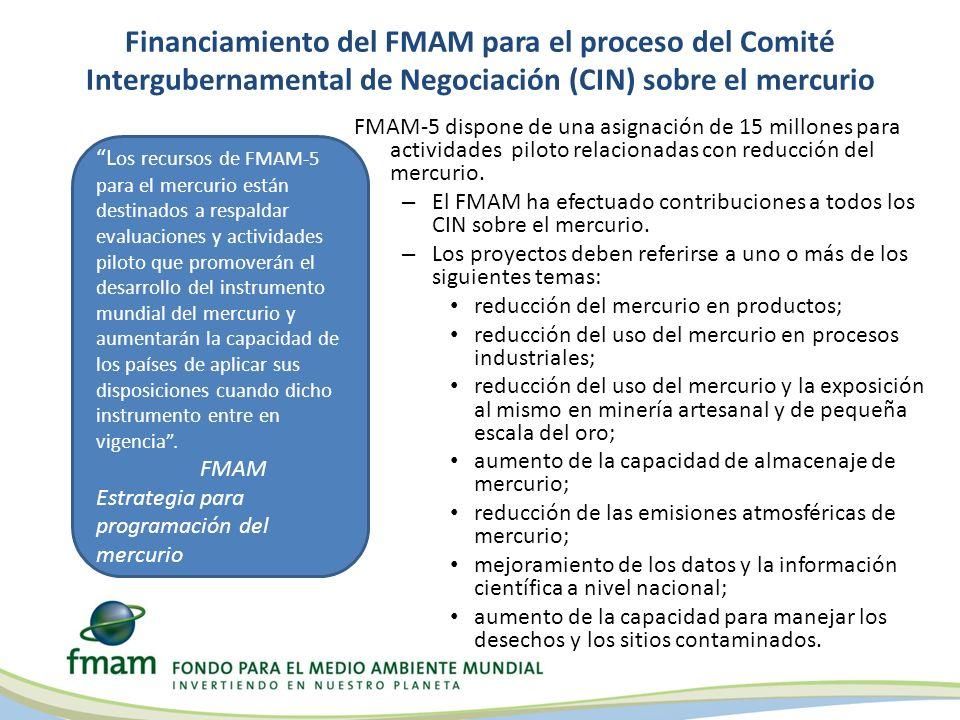 Financiamiento del FMAM para el proceso del Comité Intergubernamental de Negociación (CIN) sobre el mercurio FMAM-5 dispone de una asignación de 15 millones para actividades piloto relacionadas con reducción del mercurio.