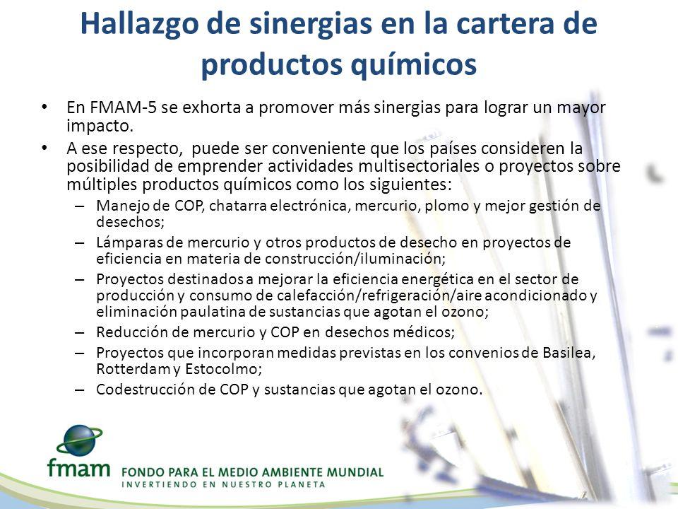 Hallazgo de sinergias en la cartera de productos químicos En FMAM-5 se exhorta a promover más sinergias para lograr un mayor impacto.