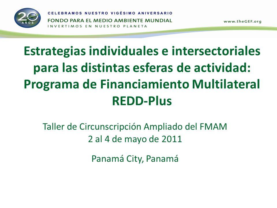 Estrategias individuales e intersectoriales para las distintas esferas de actividad: Programa de Financiamiento Multilateral REDD-Plus Taller de Circu