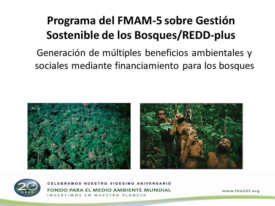 Programa del FMAM-5 sobre Gestión Sostenible de los Bosques/REDD-plus Generación de múltiples beneficios ambientales y sociales mediante financiamient