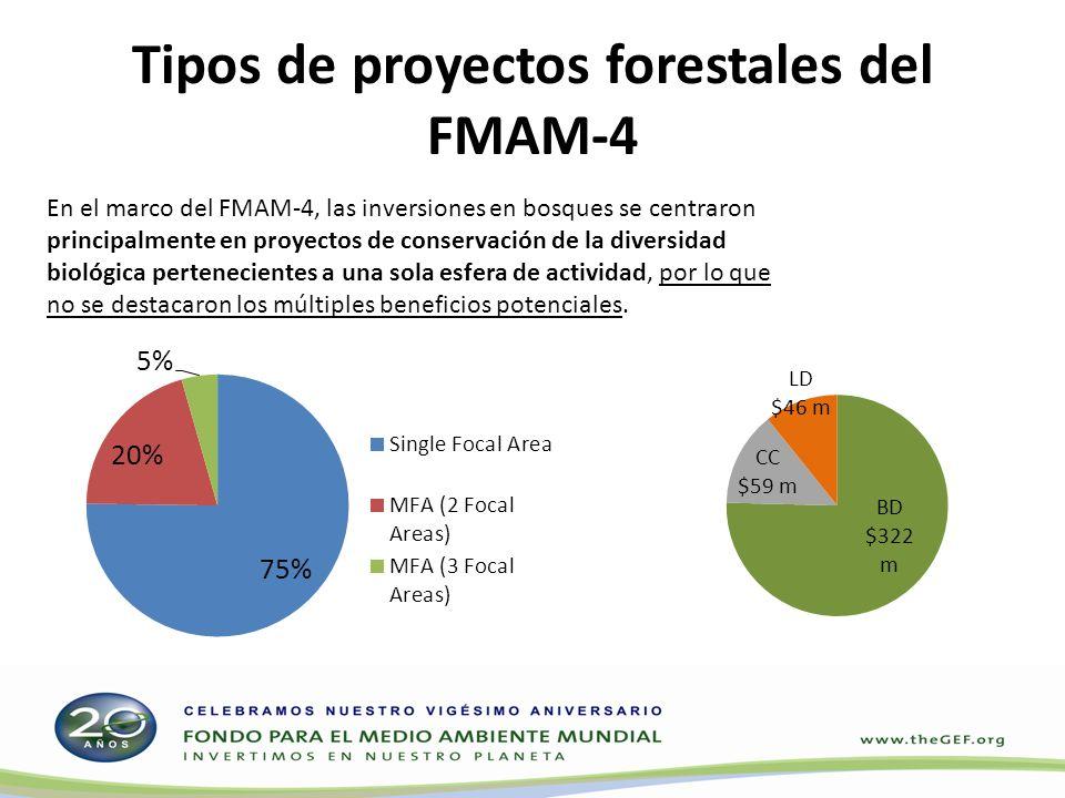 En el marco del FMAM-4, las inversiones en bosques se centraron principalmente en proyectos de conservación de la diversidad biológica pertenecientes