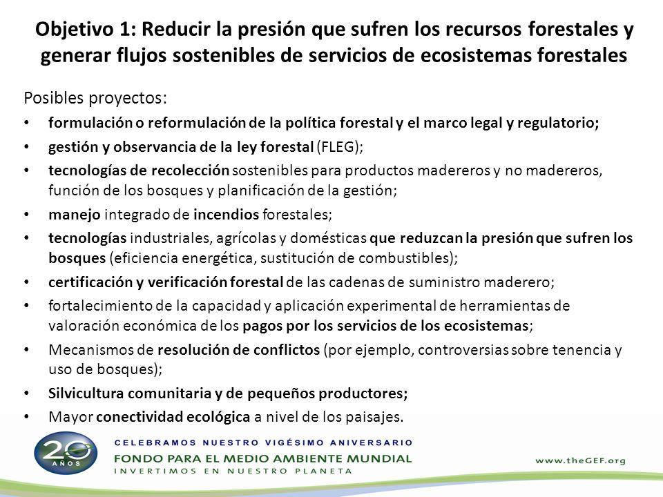 Objetivo 2: Mejorar las condiciones que propician la reducción de emisiones de gases de efecto invernadero (GEI) provenientes de la deforestación y la degradación de los bosques, y ampliar los sumideros de carbono de las actividades de cambio del uso de la tierra y silvicultura (REDD-Plus) Posibles proyectos: Usos de la tierra y cambios en el uso de la tierra (por ejemplo, potencial del uso de la tierra y actividades de planificación conexas; análisis de ventajas y desventajas); Fortalecimiento de las capacidades técnicas e institucionales para supervisar y reducir las emisiones de GEI provenientes de la deforestación y la degradación de los bosques; Prueba y adopción de enfoques que favorezcan la generación de ingresos provenientes del mercado del carbono.