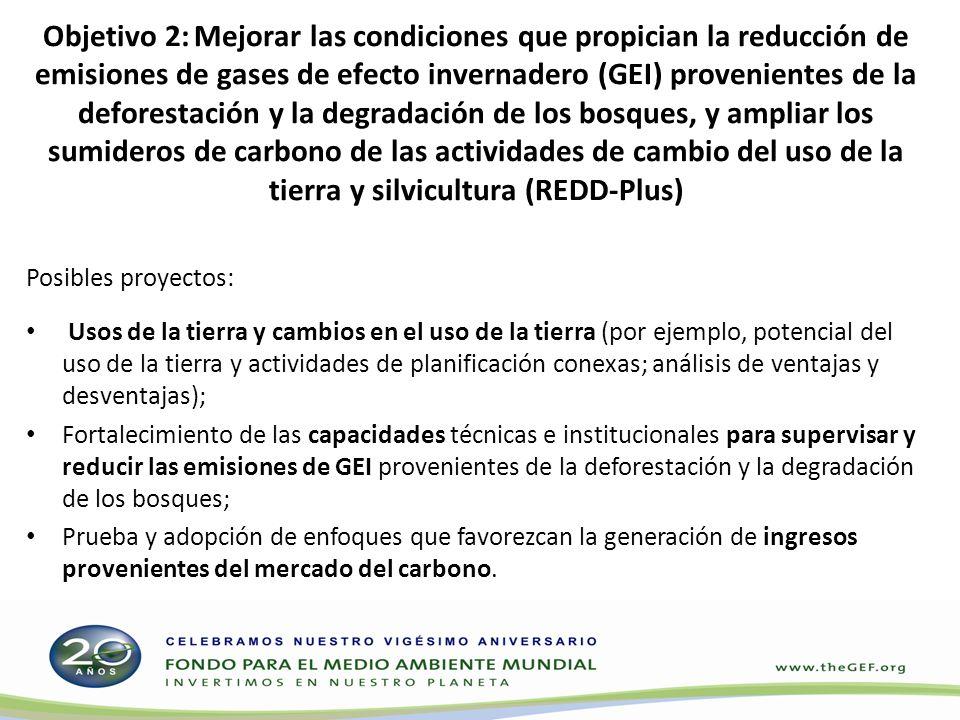 Objetivo 2: Mejorar las condiciones que propician la reducción de emisiones de gases de efecto invernadero (GEI) provenientes de la deforestación y la