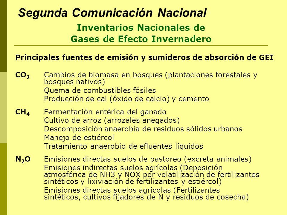 Segunda Comunicación Nacional Principales fuentes de emisión y sumideros de absorción de GEI CO 2 Cambios de biomasa en bosques (plantaciones forestal