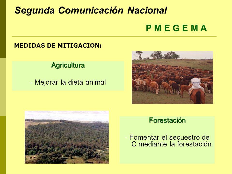 MEDIDAS DE MITIGACION: Agricultura - Mejorar la dieta animal Forestación - Fomentar el secuestro de C mediante la forestación P M E G E M A Segunda Co