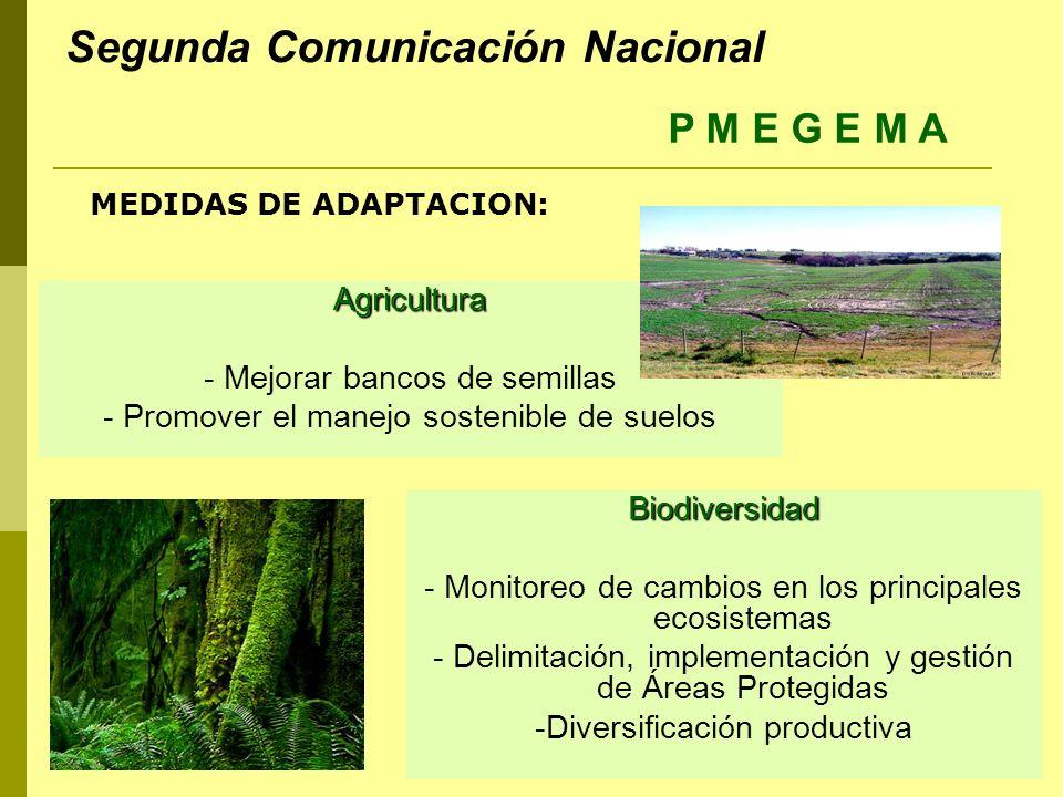 Agricultura - Mejorar bancos de semillas - Promover el manejo sostenible de suelos Biodiversidad - Monitoreo de cambios en los principales ecosistemas