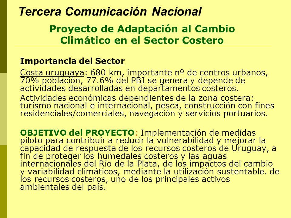 Importancia del Sector Costa uruguaya: 680 km, importante nº de centros urbanos, 70% población, 77.6% del PBI se genera y depende de actividades desar
