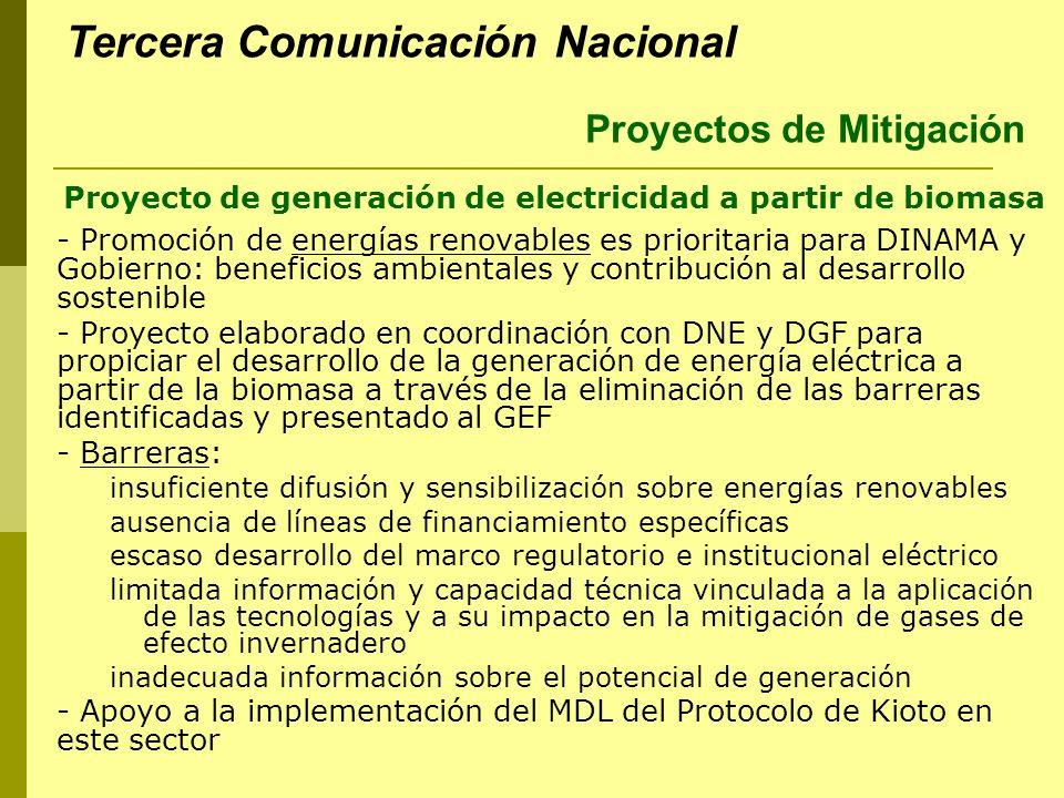 Proyecto de generación de electricidad a partir de biomasa - Promoción de energías renovables es prioritaria para DINAMA y Gobierno: beneficios ambien