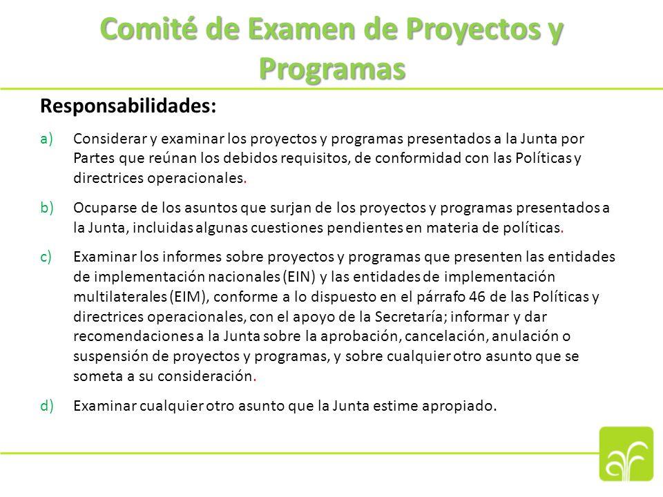 Comité de Ética y Finanzas Responsabilidades: a)Supervisar la aplicación del Código de Conducta, resolver las diferencias en su interpretación, y ocuparse de las consecuencias de su incumplimiento.