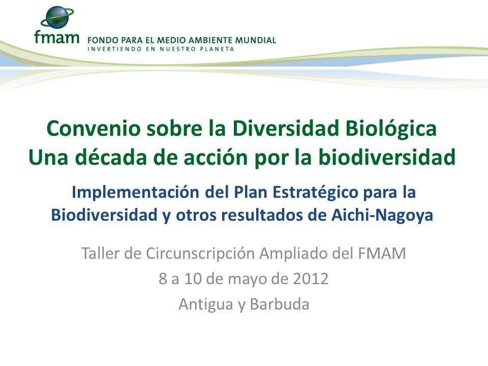 Taller de Circunscripción Ampliado del FMAM 8 a 10 de mayo de 2012 Antigua y Barbuda Convenio sobre la Diversidad Biológica Una década de acción por l