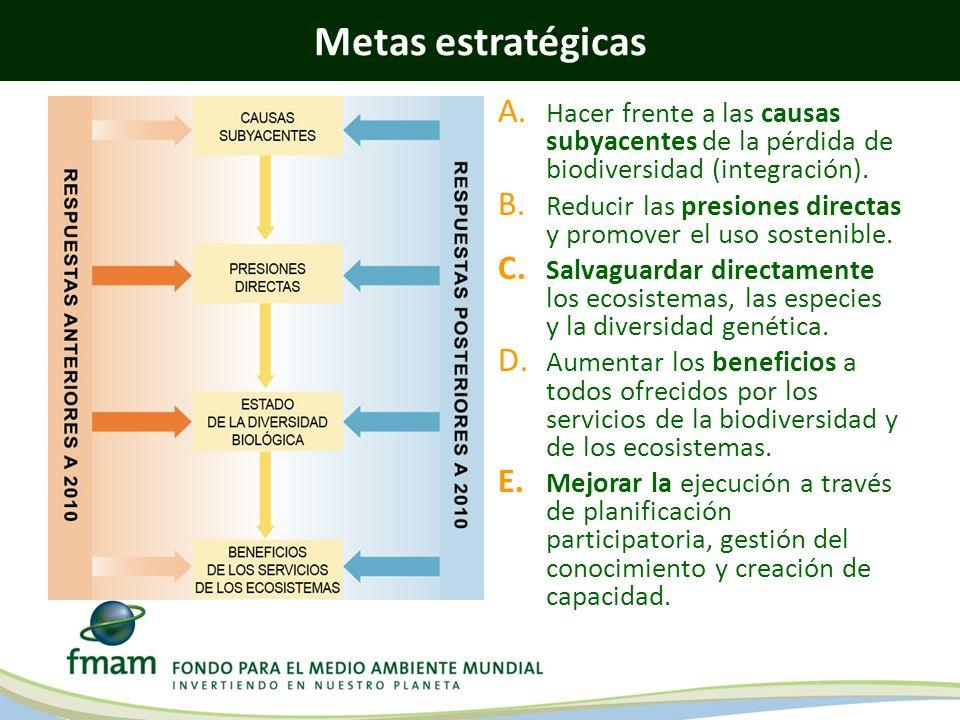 Metas estratégicas A. Hacer frente a las causas subyacentes de la pérdida de biodiversidad (integración). B. Reducir las presiones directas y promover