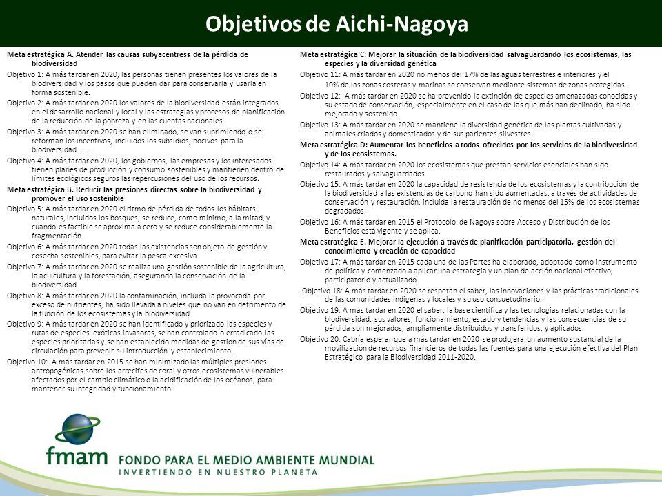 Objetivos de Aichi-Nagoya Meta estratégica A. Atender las causas subyacentress de la pérdida de biodiversidad Objetivo 1: A más tardar en 2020, las pe