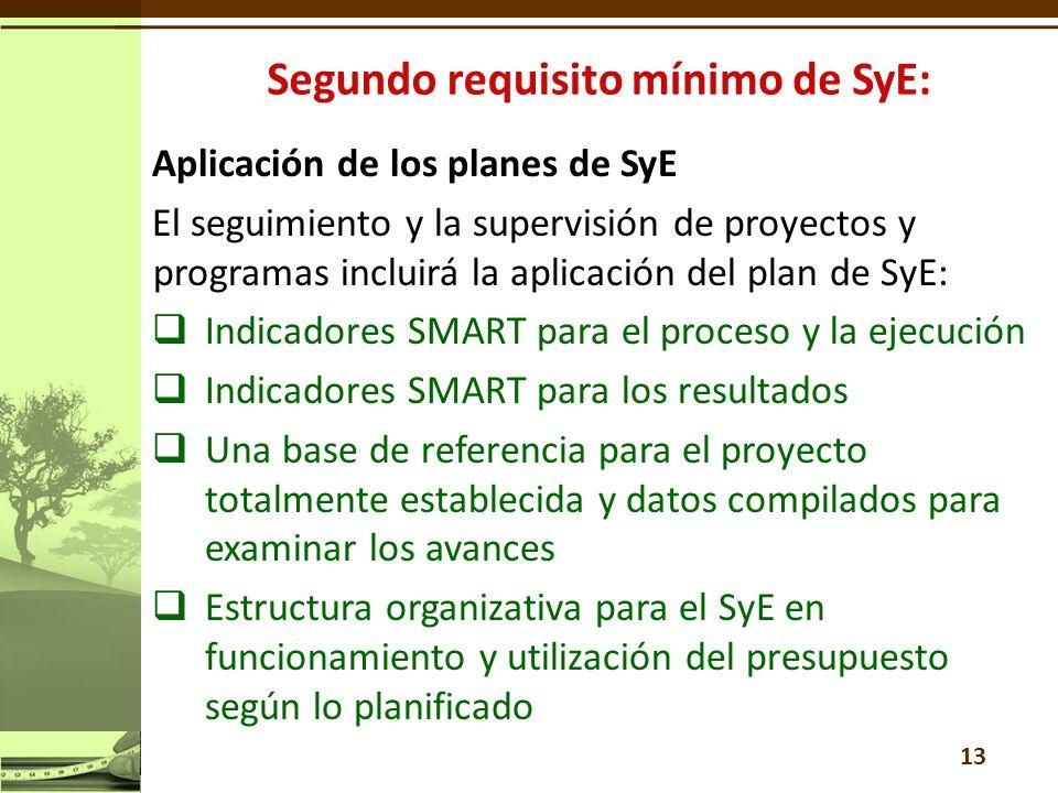 Aplicación de los planes de SyE El seguimiento y la supervisión de proyectos y programas incluirá la aplicación del plan de SyE: Indicadores SMART para el proceso y la ejecución Indicadores SMART para los resultados Una base de referencia para el proyecto totalmente establecida y datos compilados para examinar los avances Estructura organizativa para el SyE en funcionamiento y utilización del presupuesto según lo planificado 13