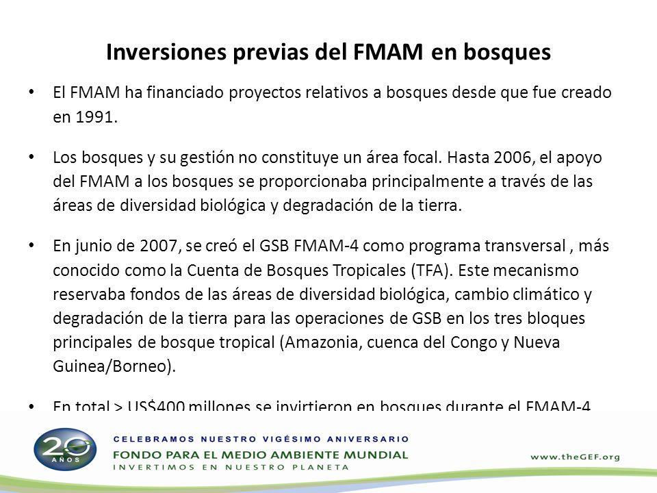 En el marco del FMAM-4, las inversiones en bosques fueron principalmente proyectos de conservación de la diversidad biológica pertenecientes a una sola área focal, por lo que no se resaltaron los múltiples beneficios potenciales.