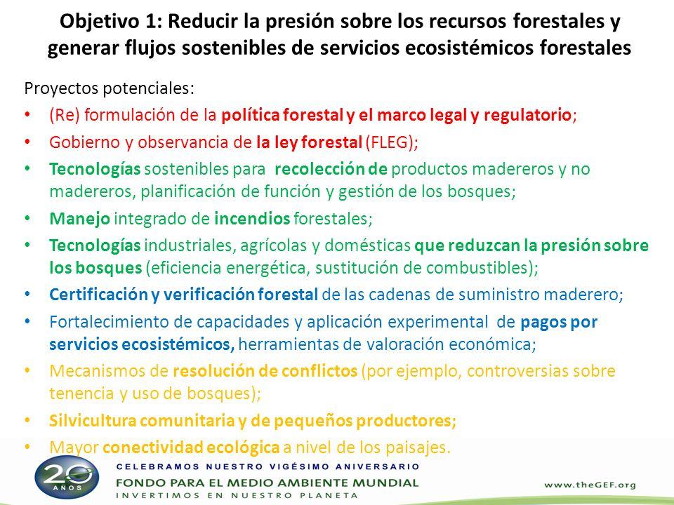 Objetivo 2: Mejorar las condiciones que propician la reducción de emisiones de gases de efecto invernadero (GEI) provenientes de la deforestación y la degradación de los bosques, y ampliar los sumideros de carbono de las actividades de cambio del uso de la tierra y silvicultura (REDD+) Potenciales proyectos: Usos de la tierra y cambios en el uso de la tierra (por ejemplo, potencial del uso de la tierra y actividades de planificación conexas; análisis de compensaciones); Fortalecimiento de las capacidades técnicas e institucionales para supervisar y reducir las emisiones de GEI provenientes de la deforestación y la degradación de los bosques; Prueba y adopción de enfoques que favorezcan la generación de ingresos provenientes del mercado del carbono.
