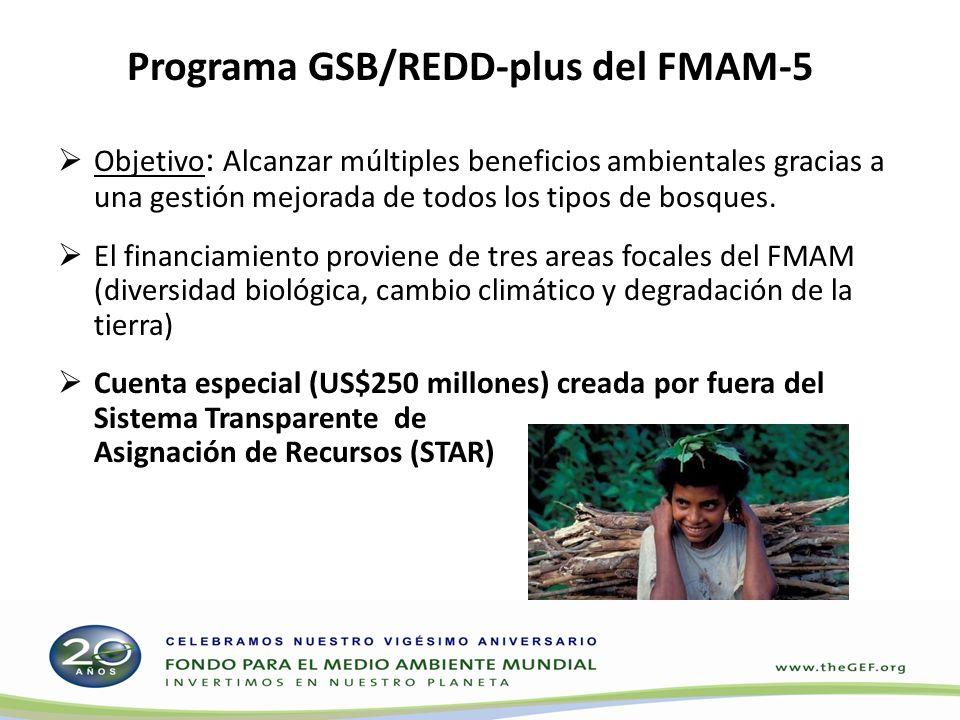 Financiamiento del GSB/REDD-Plus en el FMAM-5 Proyectos GSB/REDD+ Proyectos del GSB/REDD-Plus Cambio climático Diversidad biológica Degradación de la tierra Asignaciones de las esferas de actividad del FMAM-5 al GSB/REDD-Plus GSB REDD-Plus IN C E N I T V O US$250 millonesUS$750 millones US$2800 millones US$1000 millones en total para el GSB/REDD-Plus