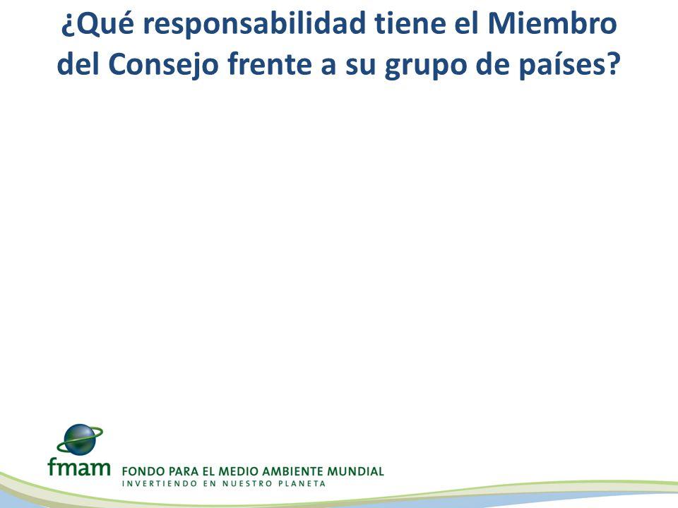 ¿Qué responsabilidad tiene el Miembro del Consejo frente a su grupo de países