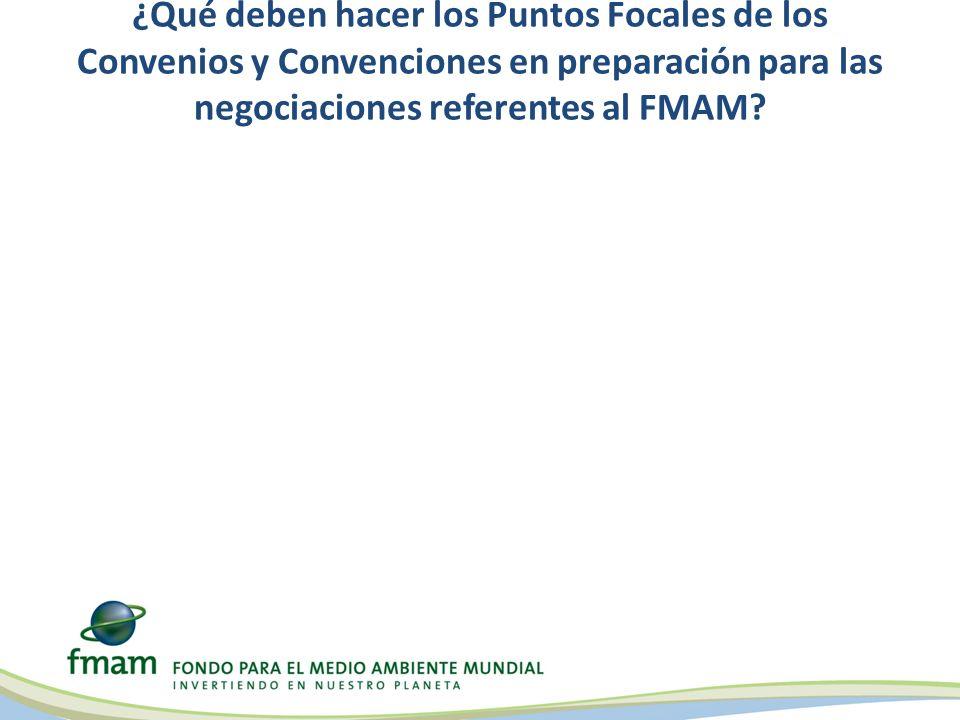 ¿Qué deben hacer los Puntos Focales de los Convenios y Convenciones en preparación para las negociaciones referentes al FMAM