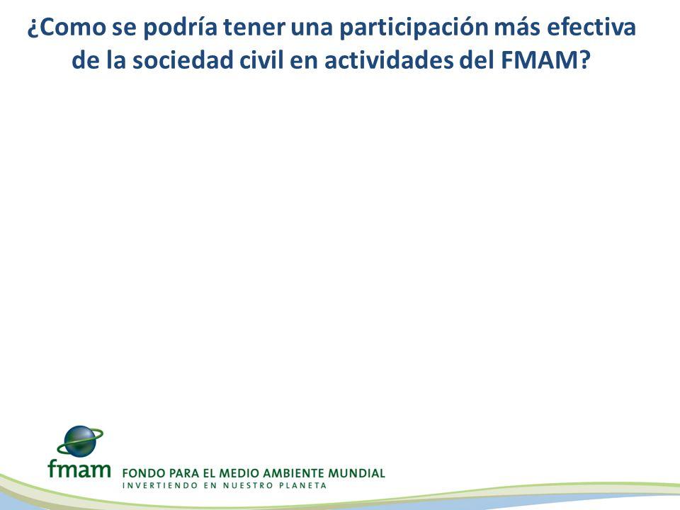 ¿Como se podría tener una participación más efectiva de la sociedad civil en actividades del FMAM?