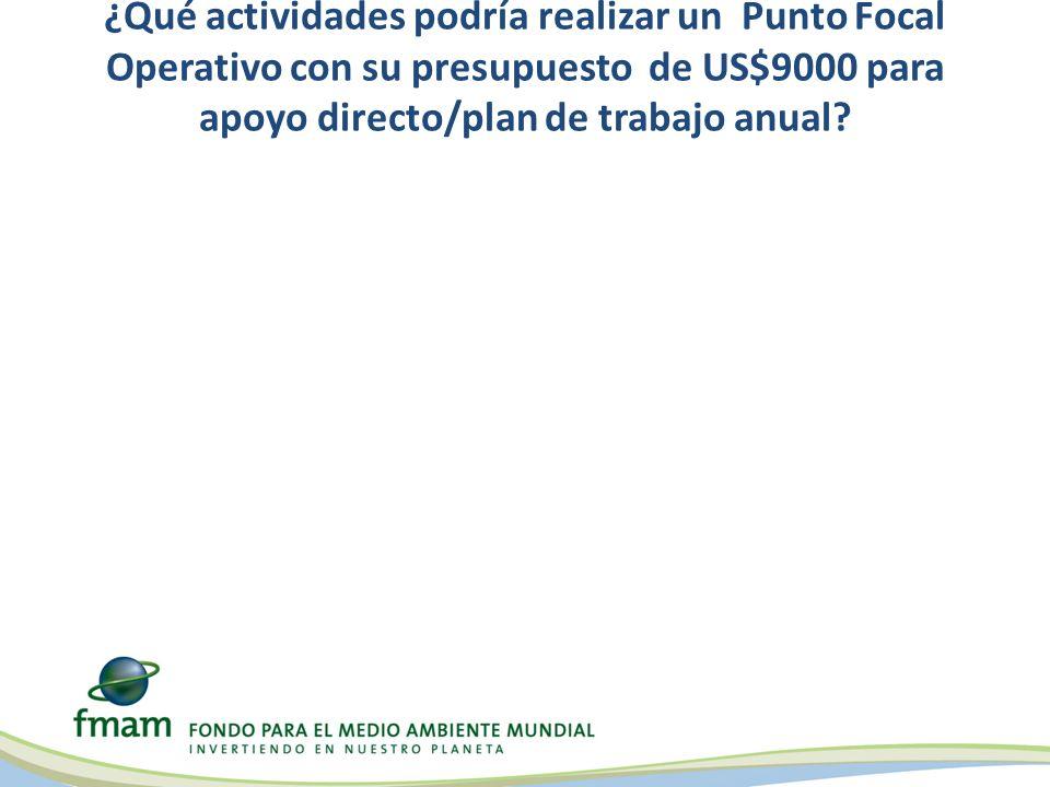 ¿Qué actividades podría realizar un Punto Focal Operativo con su presupuesto de US$9000 para apoyo directo/plan de trabajo anual?