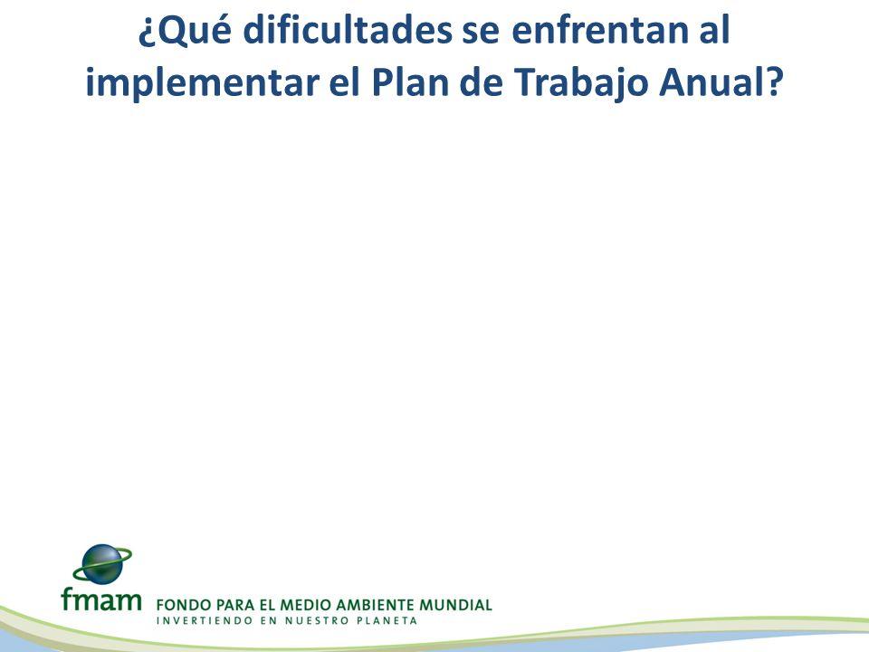¿Qué dificultades se enfrentan al implementar el Plan de Trabajo Anual?