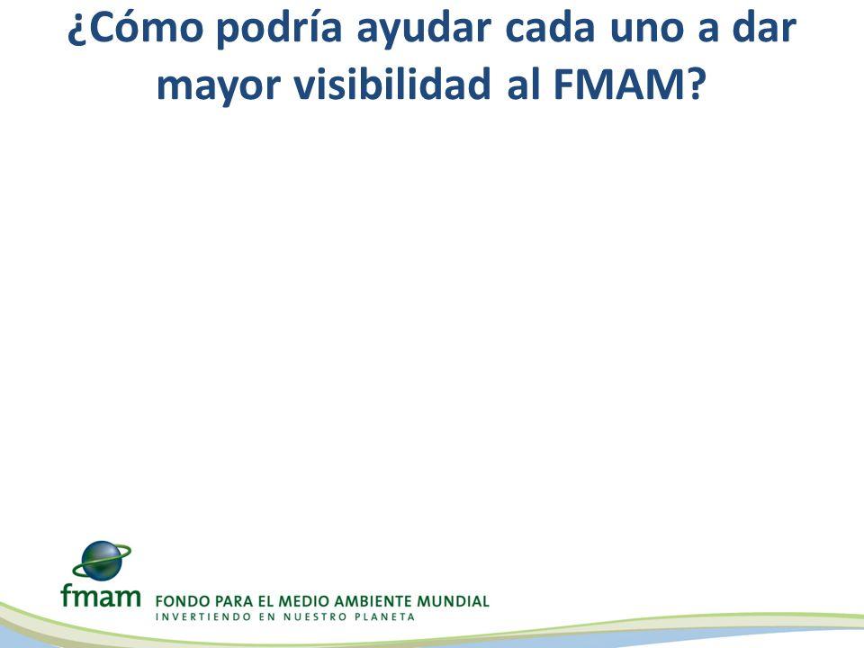 ¿Cómo podría ayudar cada uno a dar mayor visibilidad al FMAM