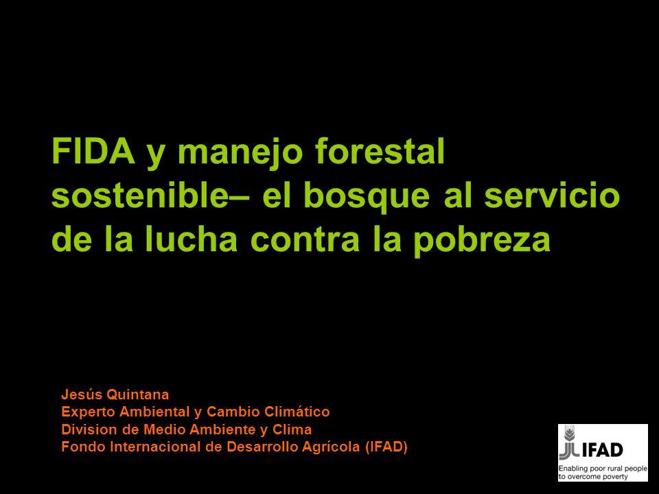 FIDA y manejo forestal sostenible– el bosque al servicio de la lucha contra la pobreza Jesús Quintana Experto Ambiental y Cambio Climático Division de Medio Ambiente y Clima Fondo Internacional de Desarrollo Agrícola (IFAD)
