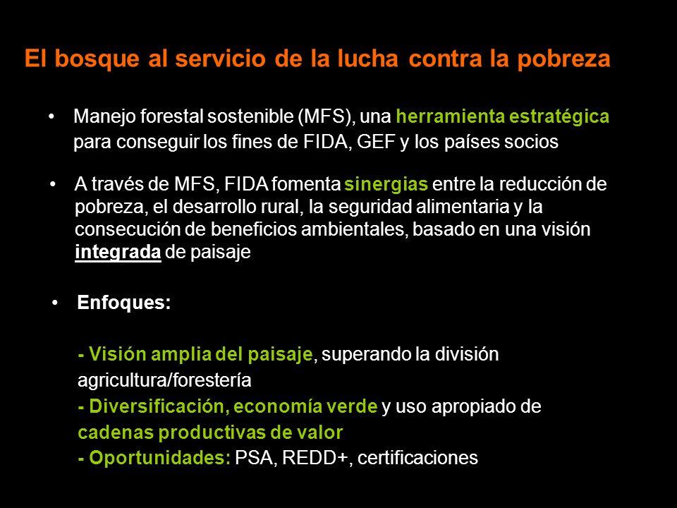 Promoviendo sinergias basadas en el paisaje FIDA, socio activo en Programa MFS del GEF: 5 proyectos, de los cuales 3 en América Latina: - Silvicultura comunitaria y REDD+: México - MFS en el marco del uso del paisaje: Ecuador y Perú Adicionalmente: - Gestión sostenible de suelos y agua: Panamá y Venezuela Apoyo a forestería comunitaria, trabajando con comunidades locales para una mejor gestión del recurso forestal - Peru Promoción de agroforestería, uniendo agricultura y árboles con un enfoque integrado de uso del paisaje - Niger Compensando por provisión de bienes y servicios ambientales - Vietnam