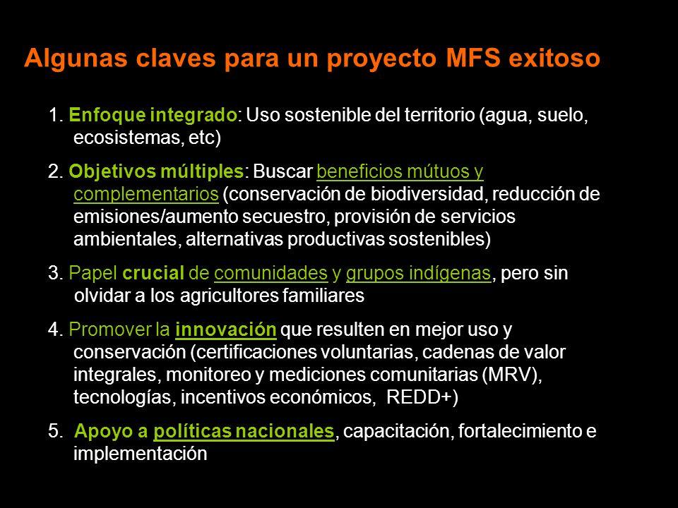 Algunas claves para un proyecto MFS exitoso 1.