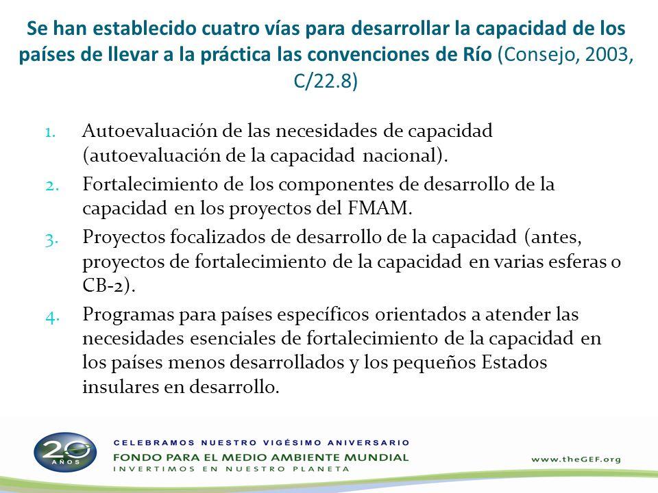 Se han establecido cuatro vías para desarrollar la capacidad de los países de llevar a la práctica las convenciones de Río (Consejo, 2003, C/22.8) 1.