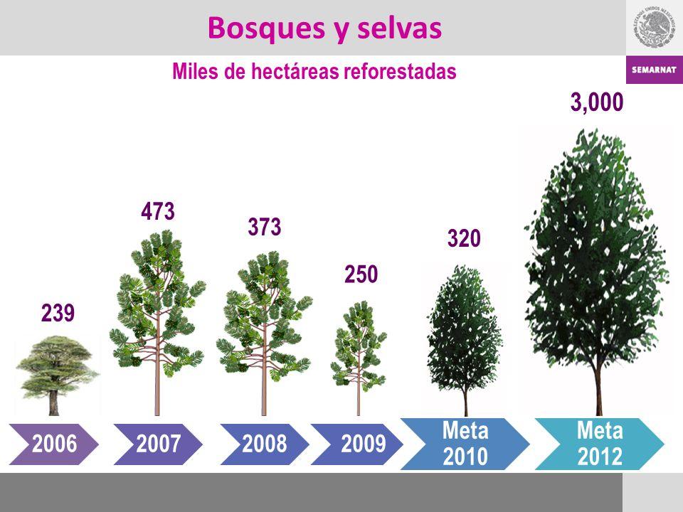 Bosques y selvas Miles de hectáreas reforestadas 239 200620072008 Meta 2010 Meta 2012 473 373 3,000 250 320 2009