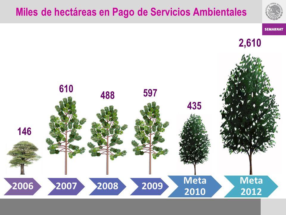 Miles de hectáreas en Pago de Servicios Ambientales 146 200620072008 Meta 2010 Meta 2012 610 488 2,610 597 435 2009