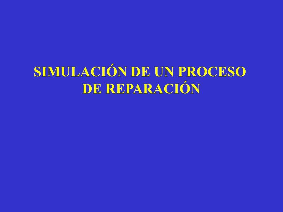 SIMULACIÓN DE UN PROCESO DE REPARACIÓN
