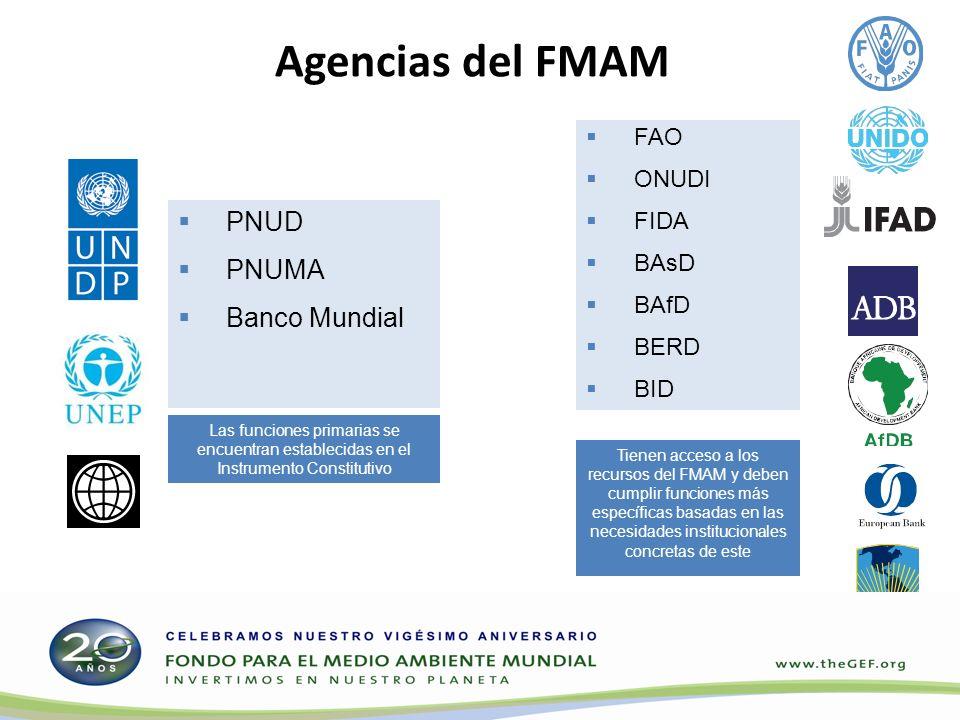 Agencias del FMAM PNUD PNUMA Banco Mundial Tienen acceso a los recursos del FMAM y deben cumplir funciones más específicas basadas en las necesidades