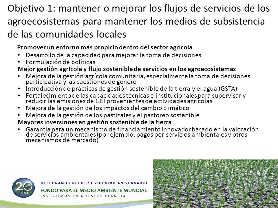 Objetivo 2: generar flujos sostenibles de servicios de ecosistemas forestales en las zonas áridas, semiáridas y subhúmedas, incluidos los medios de subsistencia de las personas que dependen de los bosques Promover un entorno más propicio dentro del sector forestal en los países donde predominan las zonas áridas Desarrollo de la capacidad: Política forestal y marcos jurídicos y regulatorios conexos Mejor gestión de los bosques y flujos sostenidos de servicios de ecosistemas forestales en zonas áridas Prácticas de gestión sostenible de bosques y árboles que están fuera de los bosques para productos madereros y no madereros.