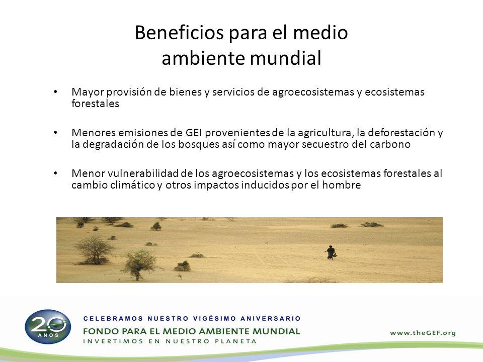 Beneficios para el medio ambiente mundial Mayor provisión de bienes y servicios de agroecosistemas y ecosistemas forestales Menores emisiones de GEI provenientes de la agricultura, la deforestación y la degradación de los bosques así como mayor secuestro del carbono Menor vulnerabilidad de los agroecosistemas y los ecosistemas forestales al cambio climático y otros impactos inducidos por el hombre