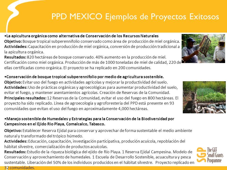 PPD MEXICO Ejemplos de Proyectos Exitosos La apicultura orgánica como alternativa de Conservación de los Recursos Naturales Objetivo: Bosque tropical subperennifolio conservado como área de producción de miel orgánica.