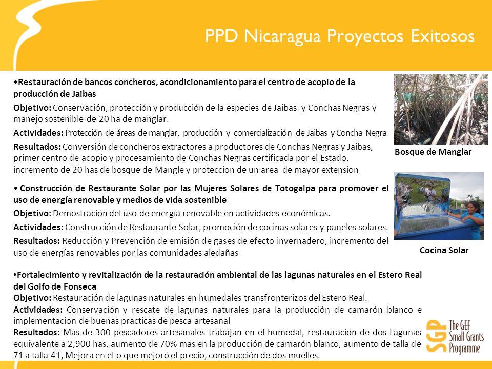 PPD Nicaragua Proyectos Exitosos Restauración de bancos concheros, acondicionamiento para el centro de acopio de la producción de Jaibas Objetivo: Conservación, protección y producción de la especies de Jaibas y Conchas Negras y manejo sostenible de 20 ha de manglar.