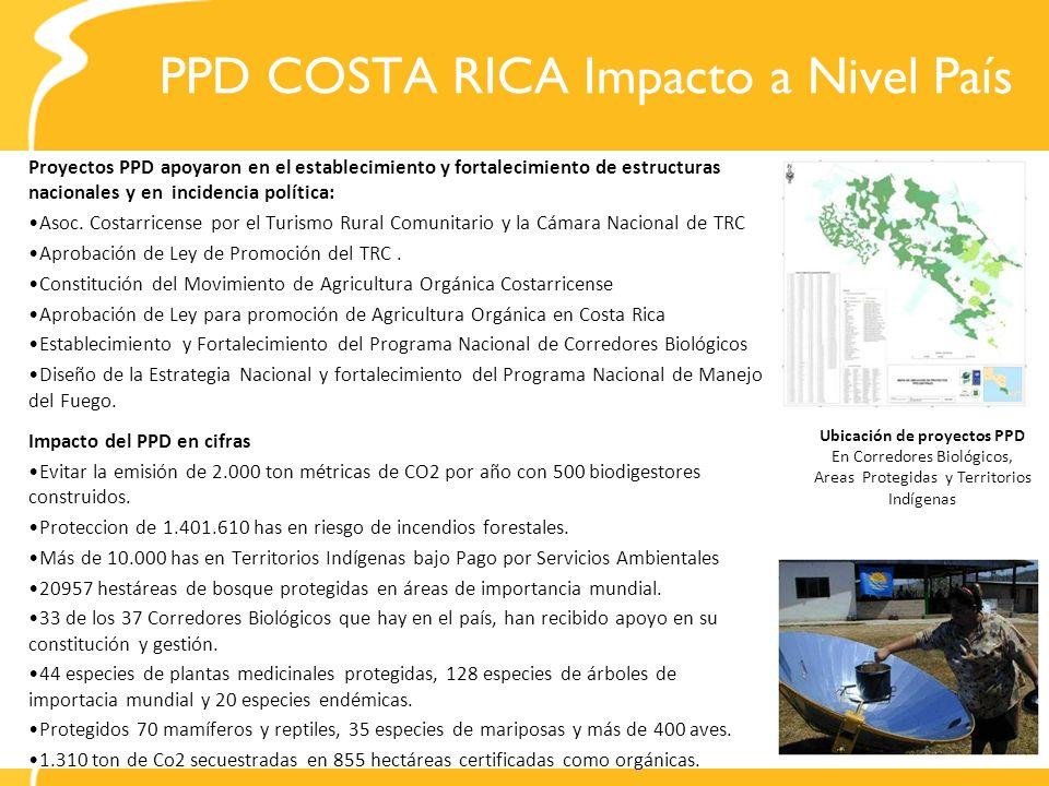 PPD COSTA RICA Impacto a Nivel País Proyectos PPD apoyaron en el establecimiento y fortalecimiento de estructuras nacionales y en incidencia política: Asoc.