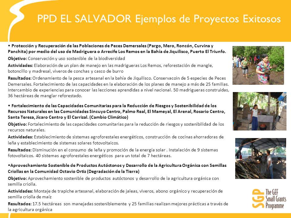 PPD EL SALVADOR Impacto a Nivel País Impacto Nacional Valoración económica de los medios de vida Pesca Artesanal y Ecoturismo.