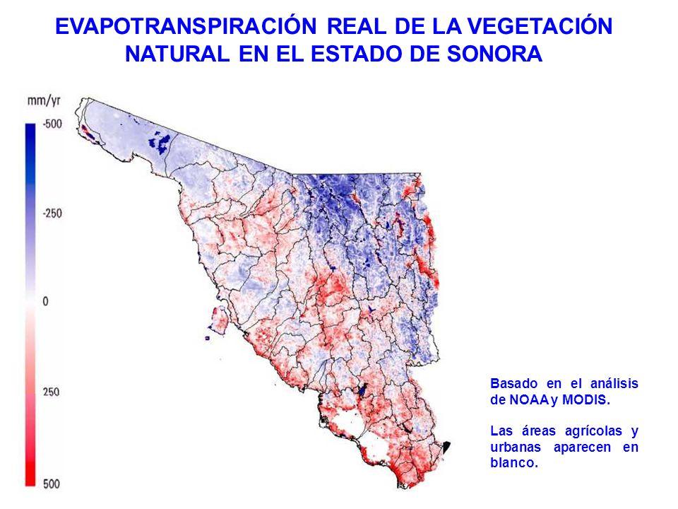 EVAPOTRANSPIRACIÓN REAL DE LA VEGETACIÓN NATURAL EN EL ESTADO DE SONORA Basado en el análisis de NOAA y MODIS. Las áreas agrícolas y urbanas aparecen