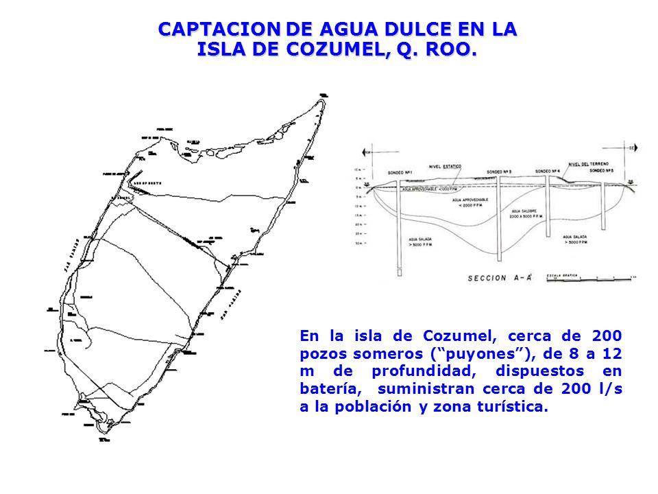 CAPTACION DE AGUA DULCE EN LA ISLA DE COZUMEL, Q. ROO. En la isla de Cozumel, cerca de 200 pozos someros (puyones), de 8 a 12 m de profundidad, dispue