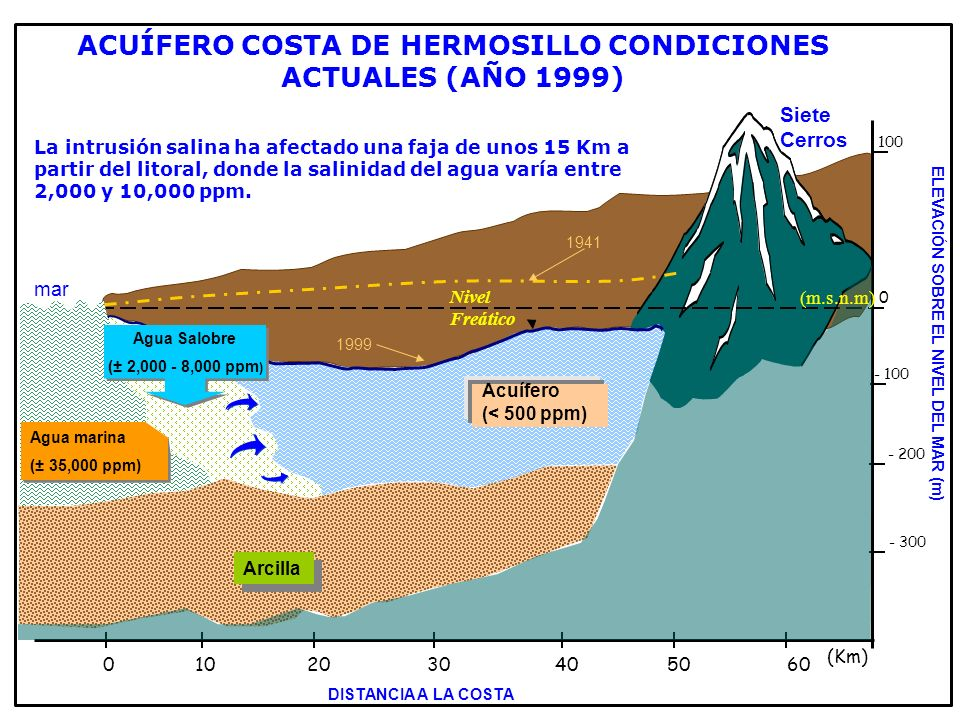 Siete Cerros Acuífero (< 500 ppm) Arcilla Nivel Freático 100 - 200 - 100 - 300 0 0102030405060 (Km) Agua marina (± 35,000 ppm) Agua marina (± 35,000 p