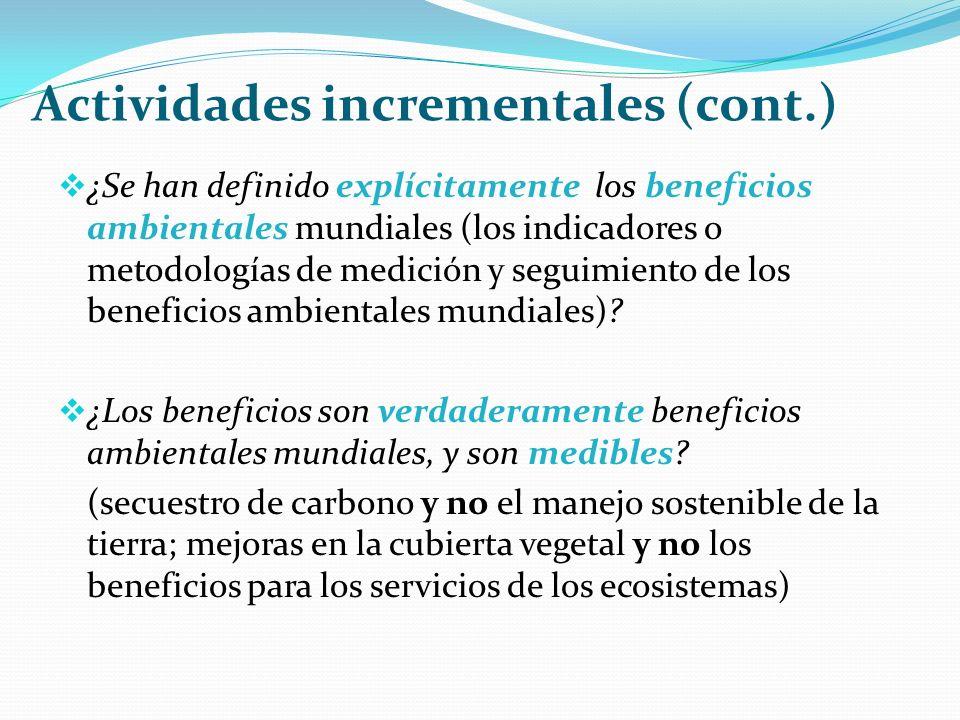 Actividades incrementales (cont.) ¿Se han definido explícitamente los beneficios ambientales mundiales (los indicadores o metodologías de medición y seguimiento de los beneficios ambientales mundiales).